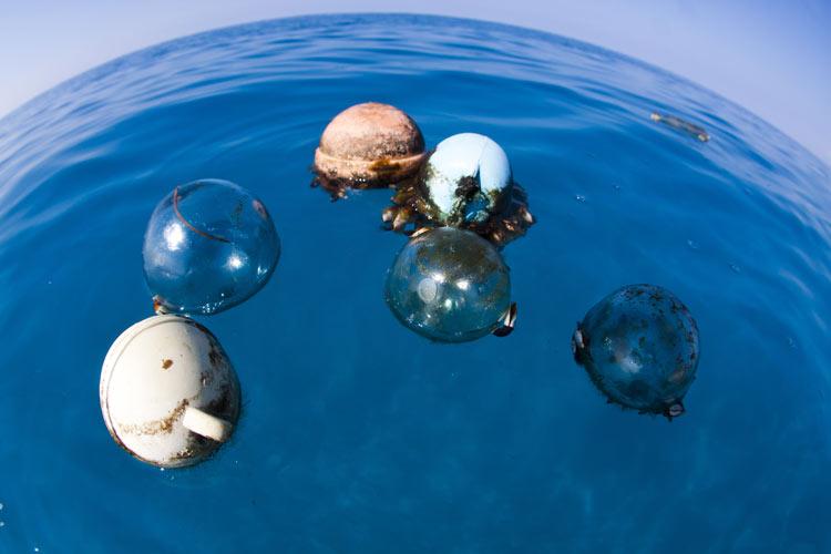 ocean_tresaure